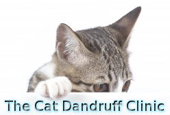 The Cat Dandruff Clinic